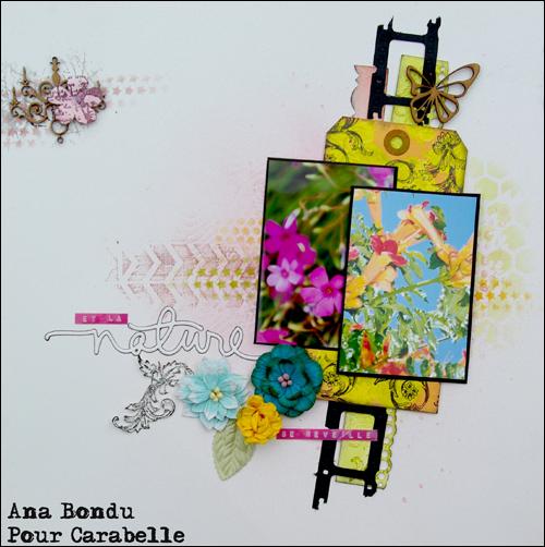 Ana_2